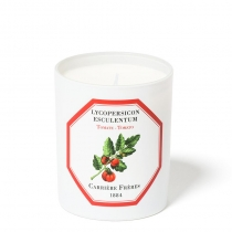 Lycopersicon Esulentum (Tomato)  - Candle - 6.5oz