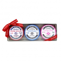Assorted Lip Salve Tin Trio