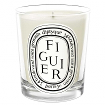Candle - Figuier (Fig Tree)