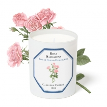 Candle - Rosa Damascena - Damask Rose - 6.5 oz.