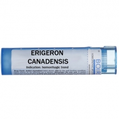 Erigeron canadensis - Multidose Tube