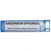 Saccharum officinale - Multidose Tube