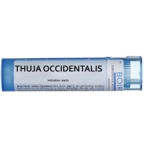 Thuja Occidentalis - Multidose Tube