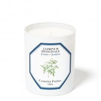Jasmine Officinale - Candle - 6.5oz