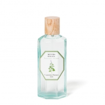 Mentha Spicata  (Spearmint) - Room Spray