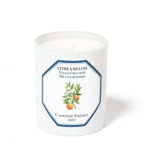 Citrus Dulcis (Orange Flower) - Candle - 6.5oz