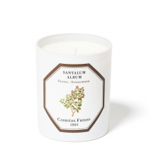 Santalum Album (Sandalwood)- Candle - 6.5oz