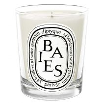 Diptyque Candle - Baies (Black Currant Leaves & Bulgarian Roses)