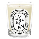 Diptyque Candle - Verveine (Verbena)