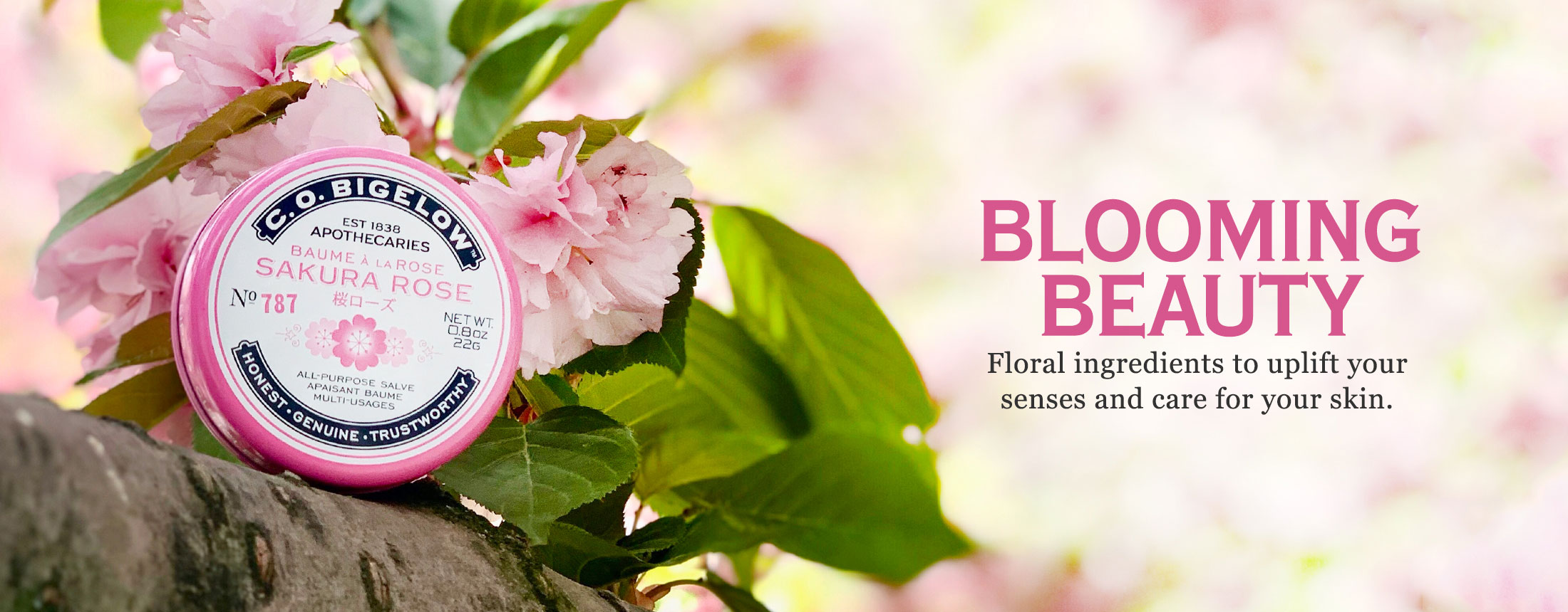 Blooming Beauty - Floral Skin Care