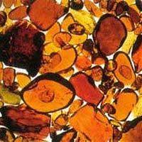 Oribe: Amber Extract