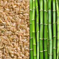 Oribe: Bamboo and Rice Silks