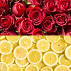 OR Natural Lemon Rose Flavor